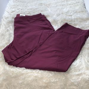 NWT JM Collection Plus 24W in purple pants